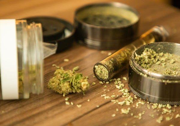 Medical benefits of THC vs CBD